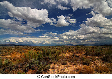 Desert Skys 2 - Wide angle view of the desert with blue skys...