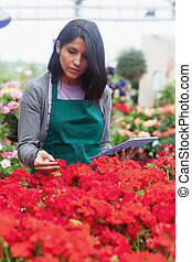 Woman holding a tablet while checking flowers in garden...