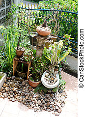 home garden with sanitary ware plant pot