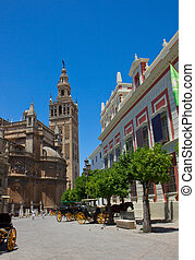 atreet near cathedral,  Seville, Spain