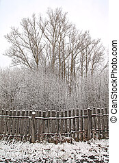 old fence in winter wood