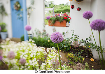 Garden with a lot of flowers