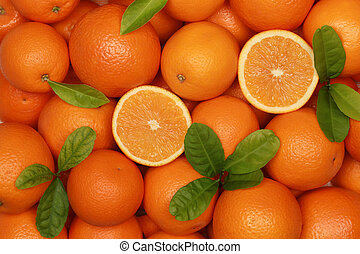 Oranges - Collection of fresh oranges with leaves forming a...