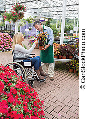 Woman in wheelchair buying a flower in garden centre