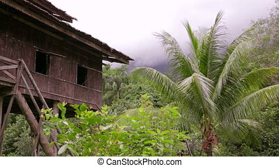 Tribal borneo houses