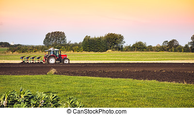 Tractor and plow in field - Small scale farming with tractor...