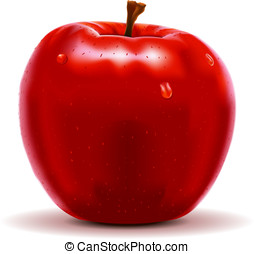 red apple isolated on white - Detailed illustration of a red...