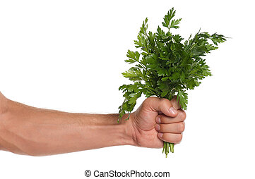 Hand with parsley