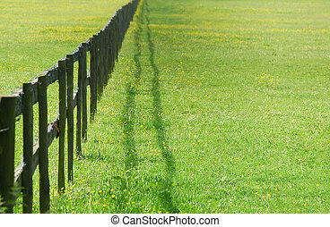 fence perspective - wooden fencing diminishing perspective