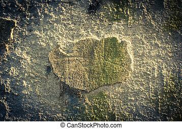 degraded wall