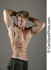 músculo,  abdominal