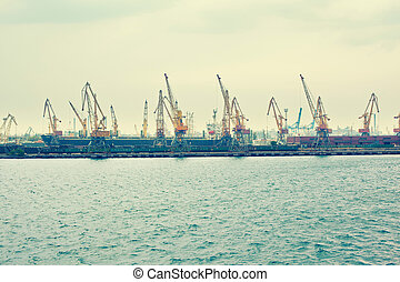 A cargo cranes in the sea port