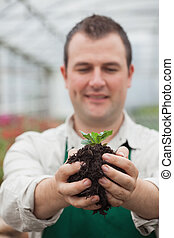 Gardener holding shrub about to plant in greenhouse