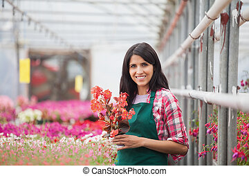 Woman holding a flower working in a greenhouse - Woman...