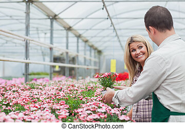 Woman choosing flower while talking to florist in...