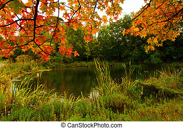 Fall Colors at the pond - Green grasses, leaves turning...