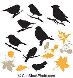 Birds and Plants Silhouettes isolated on white background.