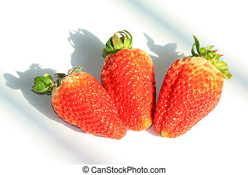 strawberry macro photography picture creative