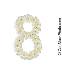 Numbers eight made of tropical flowers frangipaniplumeria...