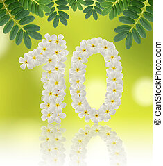 Numbers ten made of tropical flowers frangipani (plumeria) on na