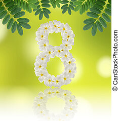 Numbers eight made of tropical flowers frangipani (plumeria) on
