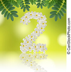 Numbers two made of tropical flowers frangipani (plumeria) on na