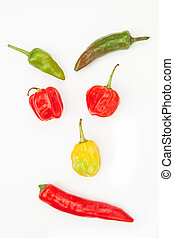 Different types of chiles including jalapeno scotch bonnet...