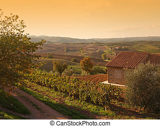 Autumn Tuscany landscape - An autumn landscape with a...