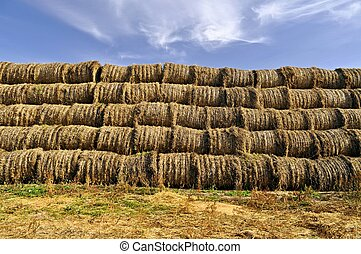 Stack of round bales of grass hay used for winter cattle...