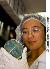 Female scientist picking colonies - A female oriental...