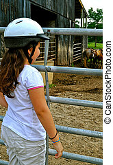 Looking at the horses