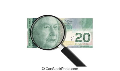 20 Canadian Dollars Magnified