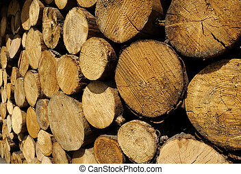 Stacked Logs - Woodstack background of big stacked logs