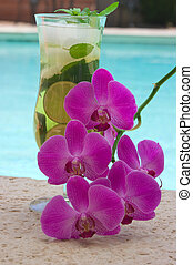 Ice Tea - Ice tea and orchids near the pool
