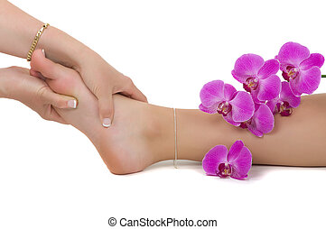 Reflexology - Massage therapy