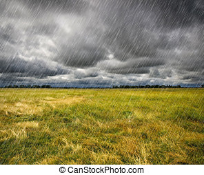 Heavy Rain over a prairie in Brittany, France - Heavy Rain...