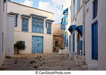 side street at Sidi Bou Said, Tunis, Tunisia - Sidi Bou Said...