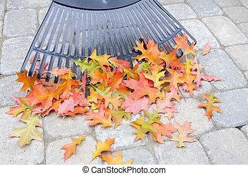 Raking Fallen Oak Leaves