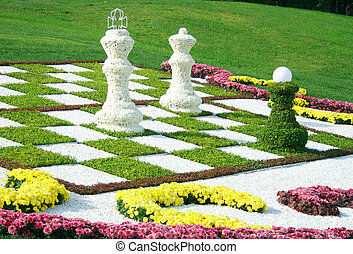 flower bed from chrysanthemums - Beautiful flower bed from...