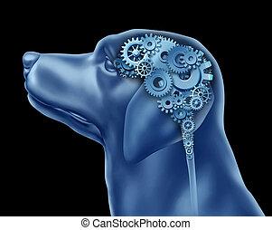 cão, inteligência