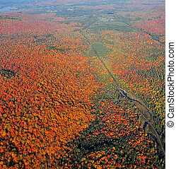 Kaleidescope - Ariel view of rt 73 in the adirondacks