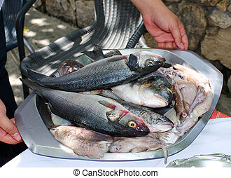 Raw fishes and calamari held by the chef