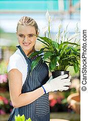 female gardener holding flowers - young female gardener...