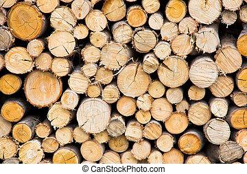 tree trunks - stack of freshly cut tree trunks