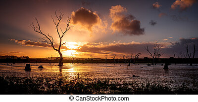 Wetland Sunset - Gorgeous sunset over the wetlands