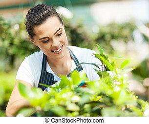 bonito, jovem, mulher, jardinagem