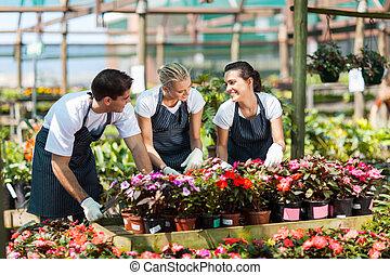 garden workers working in nursery - group of garden workers...