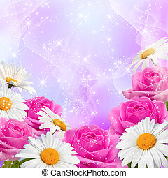 Roses and daisy - Roses, daisy and shine stars