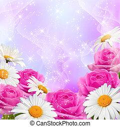 Roses and daisy - Roses, daisy and shine stars