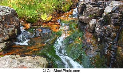 National Forest Cascade Montana - Small creek cascade in the...
